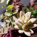 はじめてもらって大感動!多肉植物の花束ギフトがすごくステキでプレゼントにおすすめです。