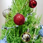 コニファーで作るクリスマスツリーがIKEAのモミの木よりもかわいくておすすめ!
