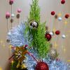 100均のお正月飾りがクリスマスツリーにピッタリ!オリジナルのコニファーツリーを楽しむ方法。