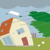 強風で多肉植物が壊滅。春一番の強風対策、ビニール温室とリメイク缶が危ない!