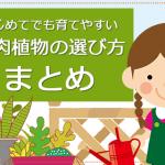 多肉植物の選び方まとめ!初心者でも育てやすい多肉植物、おすすめの種類や品種を紹介します。