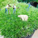 もふリッチ(サギナ)の楽しみ方。ミニチュア人形を乗っけてマン盆栽を作っちゃおう。