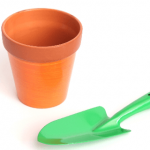 プラスチックの鉢は油断禁物!植木鉢を変えた方がよい理由を調べてみた。