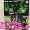 多肉植物の大特集を見逃すな!「趣味の園芸」2月号は大当たりの一冊!