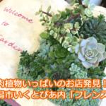 多肉植物のお店発見!新潟の人気園芸店といえばフレンズ。親子連れがあふれる理由は?