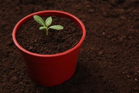 鉢植えによい土の条件と選び方。庭植え用の土での代用は失敗のもと。